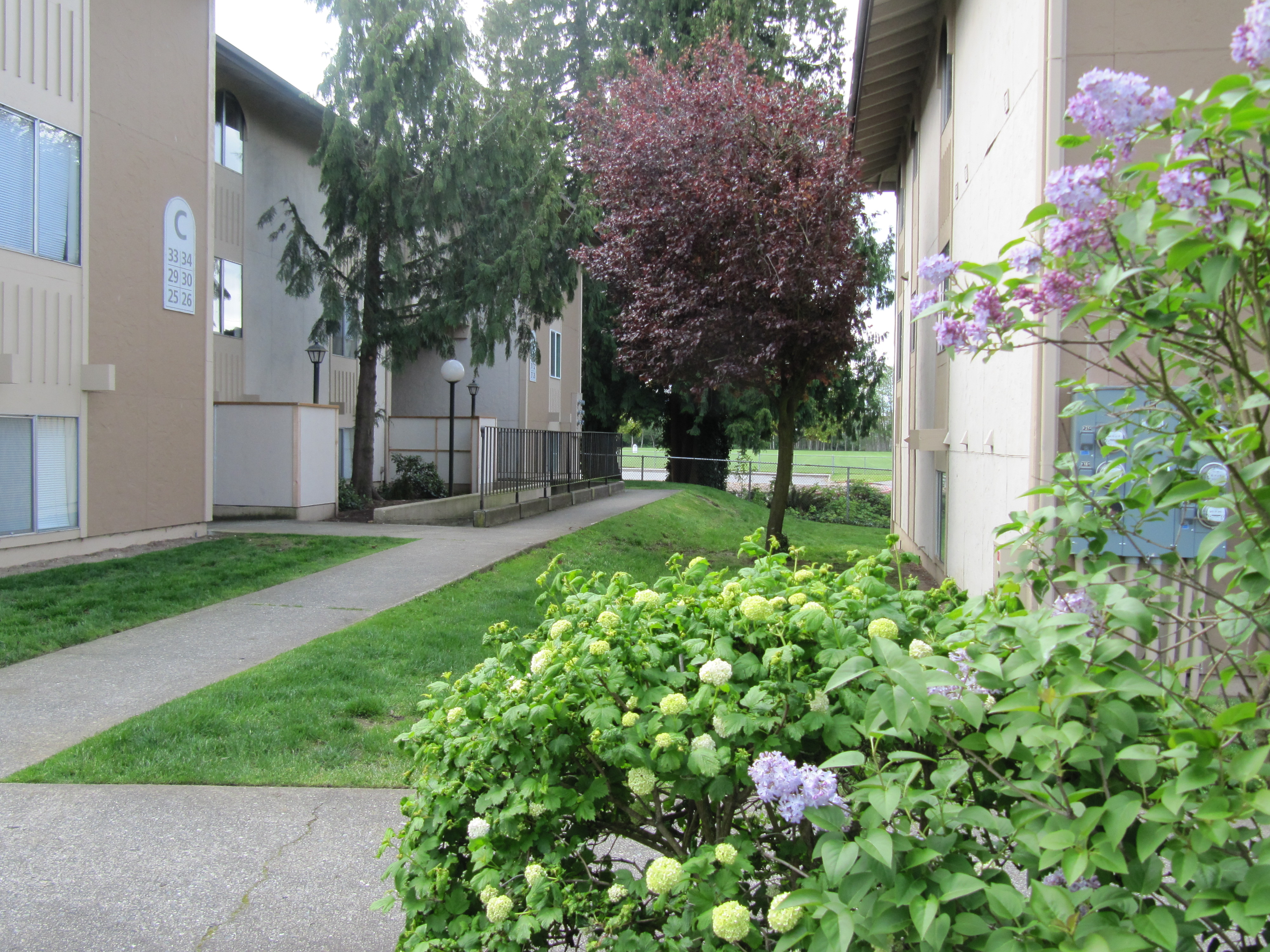 Ordinaire Apartments In Everett/Parkview 1126 W Casino Rd Everett, WA 98204/Everett  Apartments
